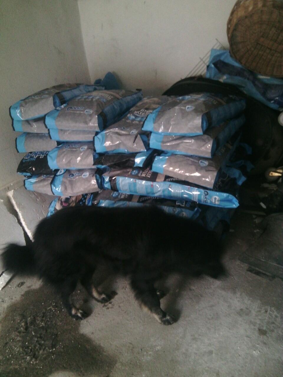 500kg Futter für die Hunde in Travnik