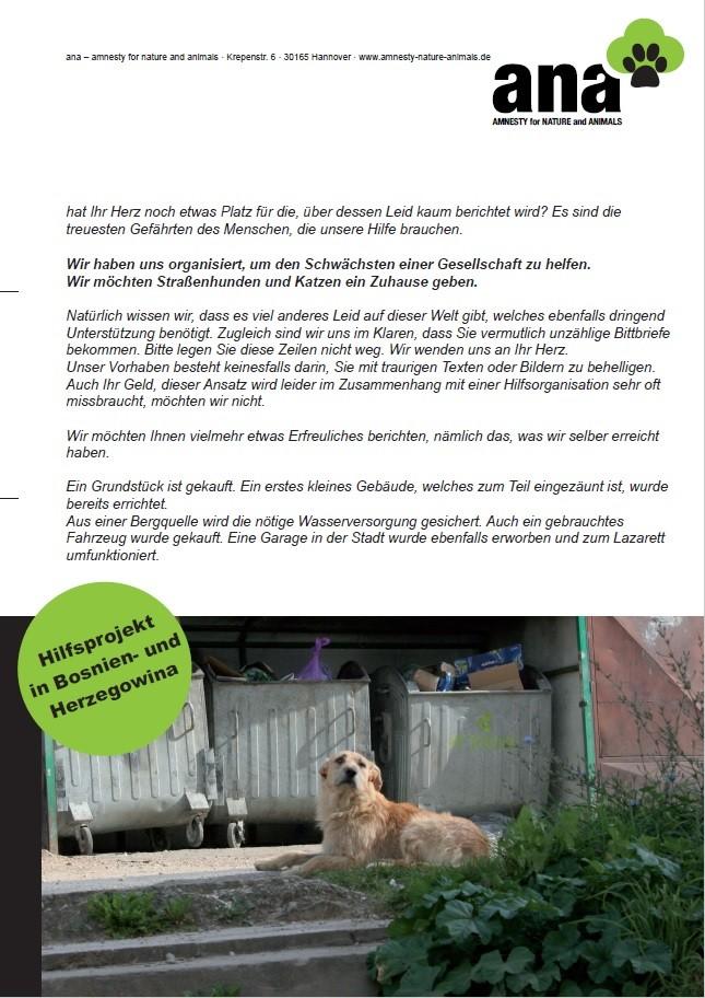 ANA Flyer Hilfsprojekt Straßenhunde und Katzen